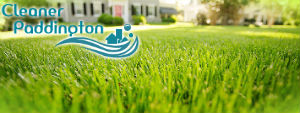 grass-cutting-services-paddington
