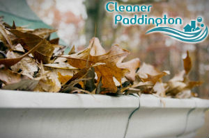 gutter-cleaners-paddington